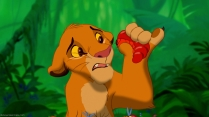 Poor Simba. I know what a diet change is like. Hakuna Matata!