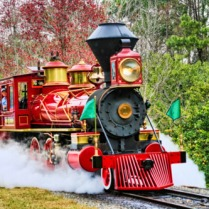 WDW trains bring great memories!
