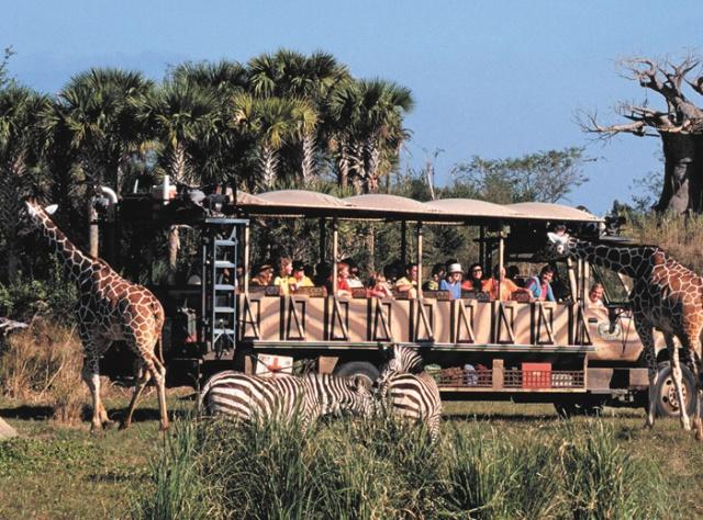 animal-kingdom-High-Res-DAK-Safari